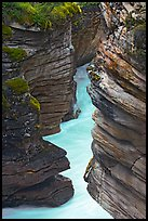 Narrow canyon at the base of Athabasca Falls. Jasper National Park, Canadian Rockies, Alberta, Canada ( color)