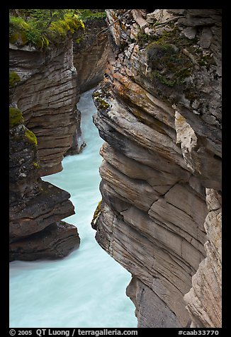 Gorge at the base of Athabasca Falls. Jasper National Park, Canadian Rockies, Alberta, Canada (color)