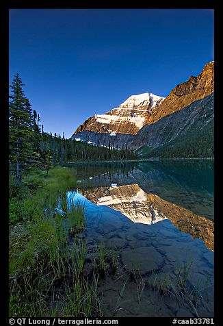 Mt Edith Cavell reflected in Cavell Lake, sunrise. Jasper National Park, Canadian Rockies, Alberta, Canada (color)