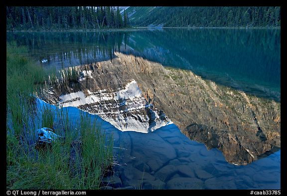 Reflections in Cavell Lake, early morning. Jasper National Park, Canadian Rockies, Alberta, Canada