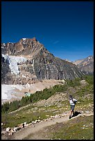 Hiker on a trail below Angel Glacier. Jasper National Park, Canadian Rockies, Alberta, Canada