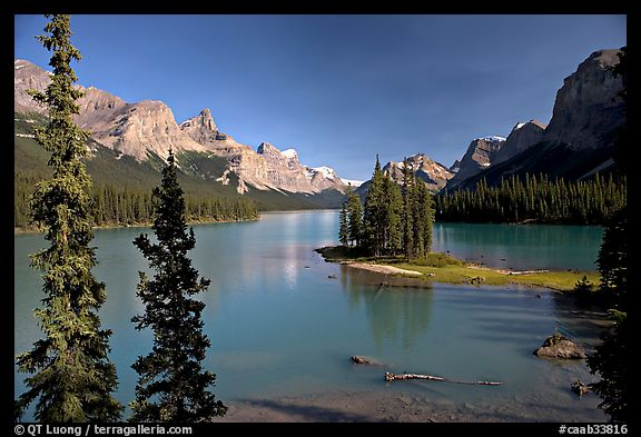 Tiny island with evergreens on  Maligne Lake, afternoon. Jasper National Park, Canadian Rockies, Alberta, Canada