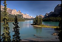 Tiny island with evergreens on  Maligne Lake, afternoon. Jasper National Park, Canadian Rockies, Alberta, Canada (color)