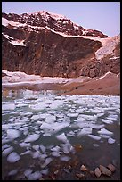 Cavell Pond, with the face of Mt Edith Cavell looming above, sunrise. Jasper National Park, Canadian Rockies, Alberta, Canada