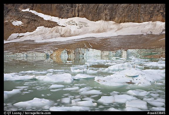 Icebergs in glacial lake and Cavell Glacier. Jasper National Park, Canadian Rockies, Alberta, Canada (color)