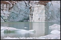 Wall of ice and Cavell Pond,. Jasper National Park, Canadian Rockies, Alberta, Canada (color)