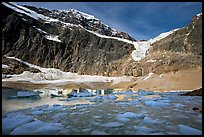 Icebergs and Cavell Pond at the base of Mt Edith Cavell, early morning. Jasper National Park, Canadian Rockies, Alberta, Canada