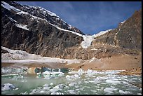 Cavell Pond and glaciers  at the base of Mt Edith Cavell, early morning. Jasper National Park, Canadian Rockies, Alberta, Canada