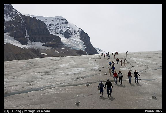 Tourists in a marked area of Athabasca Glacier. Jasper National Park, Canadian Rockies, Alberta, Canada (color)