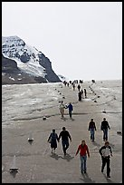 Tourists descending Athabasca Glacier. Jasper National Park, Canadian Rockies, Alberta, Canada (color)