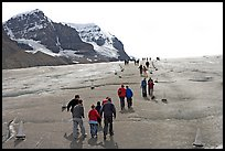 Tourists and families on Athabasca Glacier. Jasper National Park, Canadian Rockies, Alberta, Canada ( color)