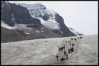 People amongst glacier and peaks, Columbia Icefield. Jasper National Park, Canadian Rockies, Alberta, Canada