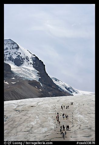 Athabasca Glacier with people in delimited area. Jasper National Park, Canadian Rockies, Alberta, Canada (color)