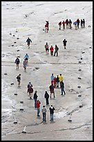 People in delimited area, Athabasca Glacier. Jasper National Park, Canadian Rockies, Alberta, Canada (color)