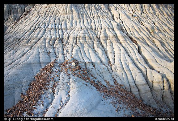 Badlands detail, with eroded clay and gravel, Dinosaur Provincial Park. Alberta, Canada (color)
