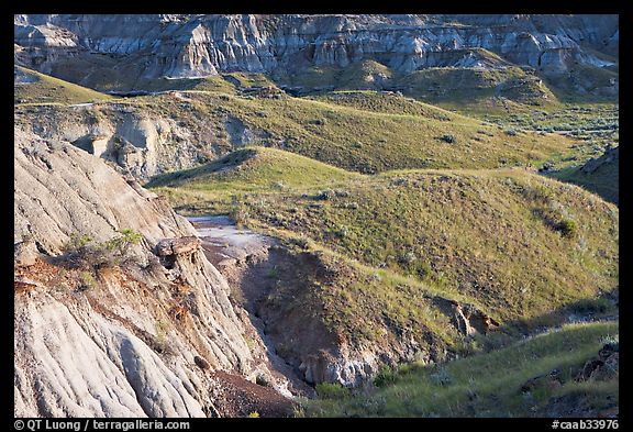Hills and badlands, morning, Dinosaur Provincial Park. Alberta, Canada