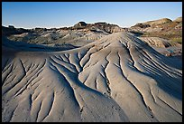 Eroded badlands, morning, Dinosaur Provincial Park. Alberta, Canada (color)