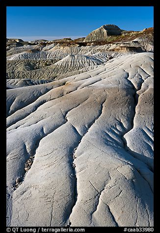 Coulee badlands with clay erosion patters, Dinosaur Provincial Park. Alberta, Canada (color)