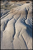 Patterns of mudstone erosion, Dinosaur Provincial Park. Alberta, Canada (color)