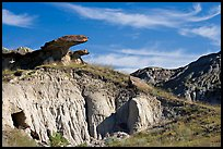 Caprock rocks and badlands, Dinosaur Provincial Park. Alberta, Canada (color)