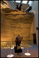 Interpretative center exhibit, Head-smashed-In Buffalo Jump. Alberta, Canada