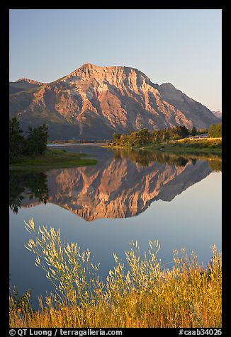 Vimy Peak and reflection in Middle Waterton Lake, sunrise. Waterton Lakes National Park, Alberta, Canada (color)