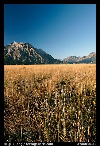 Grass prairie and front range Rocky Mountain peaks. Waterton Lakes National Park, Alberta, Canada