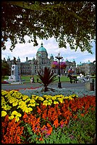 Legislature and horse carriage framed by leaves and flowers. Victoria, British Columbia, Canada ( color)