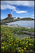 Flowers and Fisgard Lighthouse. Victoria, British Columbia, Canada (color)