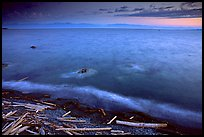 Beach with driftwood, and Olympic Mountains across the Juan de Fuca Strait. Victoria, British Columbia, Canada