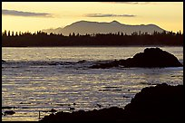 Rocks, tree line, and mountains from Half-moon bay, late afternoon. Pacific Rim National Park, Vancouver Island, British Columbia, Canada