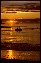 Small boat at Sunset, Half-moon bay. Pacific Rim National Park, Vancouver Island, British Columbia, Canada ( color)