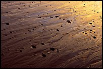 Reflections in wet sand at sunset, Half-moon bay. Pacific Rim National Park, Vancouver Island, British Columbia, Canada ( color)