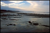 Long Beach, early morning. Pacific Rim National Park, Vancouver Island, British Columbia, Canada ( color)