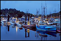 Commercial fishing fleet at dawn, Uclulet. Vancouver Island, British Columbia, Canada (color)