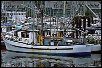 Fishing boat in harbour, Uclulet. Vancouver Island, British Columbia, Canada (color)