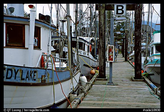 Fishing boats docked, Uclulet. Vancouver Island, British Columbia, Canada (color)