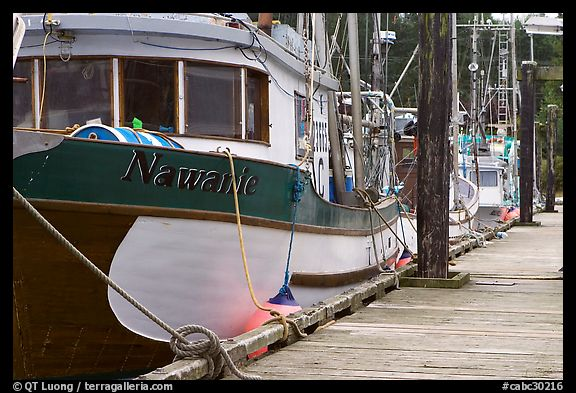 Commercial fishing boats, Uclulet. Vancouver Island, British Columbia, Canada (color)