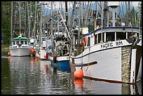 Fishing fleet, Uclulet. Vancouver Island, British Columbia, Canada (color)