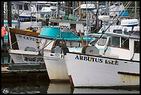 Commercial Fishing fleet, Uclulet. Vancouver Island, British Columbia, Canada (color)