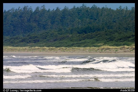 Waves washing on Long Beach. Pacific Rim National Park, Vancouver Island, British Columbia, Canada