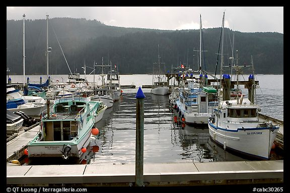 Fishing boats in harbour in Alberni Inlet, Port Alberni. Vancouver Island, British Columbia, Canada (color)