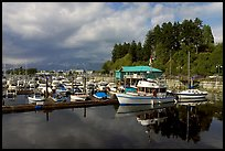 Small boat harbor, Port Alberni. Vancouver Island, British Columbia, Canada (color)