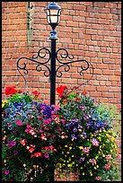 Flowers, street lamp, brick wall. Victoria, British Columbia, Canada