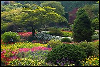 Annual flowers and trees in Sunken Garden. Butchart Gardens, Victoria, British Columbia, Canada