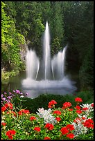 Ross Fountain and flowers. Butchart Gardens, Victoria, British Columbia, Canada