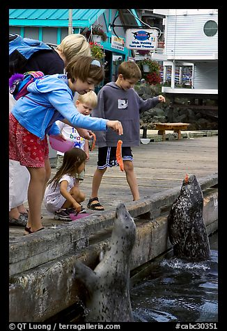Kids feeding harbour seals, Fisherman's wharf. Victoria, British Columbia, Canada (color)