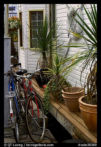 Bicycles, potted plants, and houseboat. Victoria, British Columbia, Canada (color)