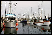 Commercial fishing boats, Upper Harbor. Victoria, British Columbia, Canada (color)