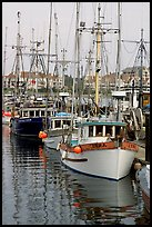 Commercial fishing fleet, Upper Harbour. Victoria, British Columbia, Canada (color)